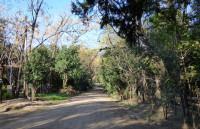 t227, OPORTUNIDAD- Lote En Ciudad Parque Los Reartes