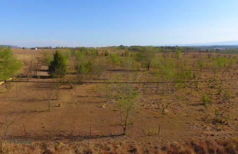 lote reartes (17)