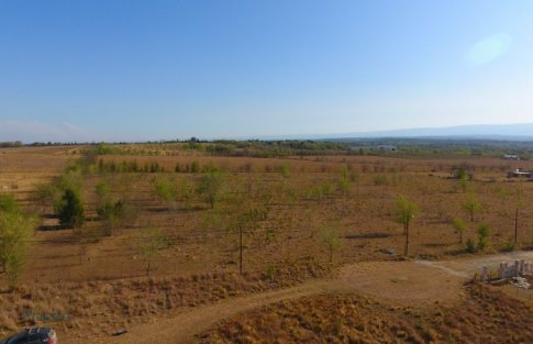 lote reartes (2)