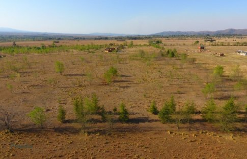 lote reartes (25)